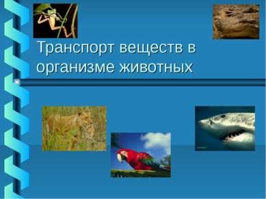Транспорт веществ в организме животных