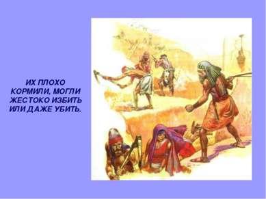 ИХ ПЛОХО КОРМИЛИ, МОГЛИ ЖЕСТОКО ИЗБИТЬ ИЛИ ДАЖЕ УБИТЬ.