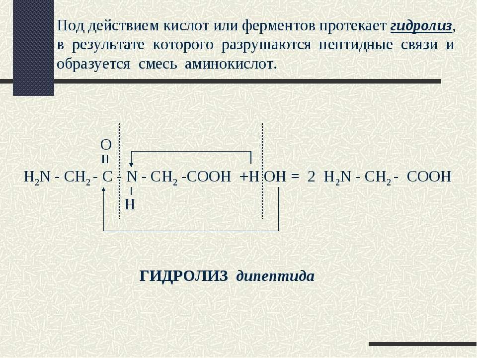 Под действием кислот или ферментов протекает гидролиз, в результате которого ...
