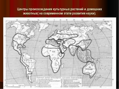 Центры происхождения культурных растений и домашних животных( на современном ...