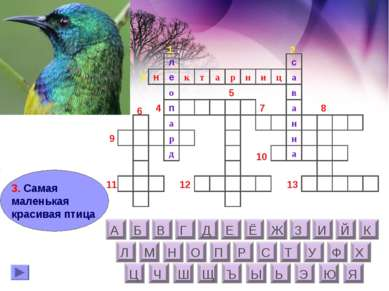 3. Самая маленькая красивая птица о л н е а н н и ц с а в а а р н к т а п д р...