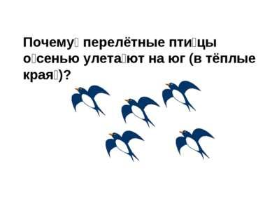 Почему перелётные пти цы о сенью улета ют на юг (в тёплые края )?