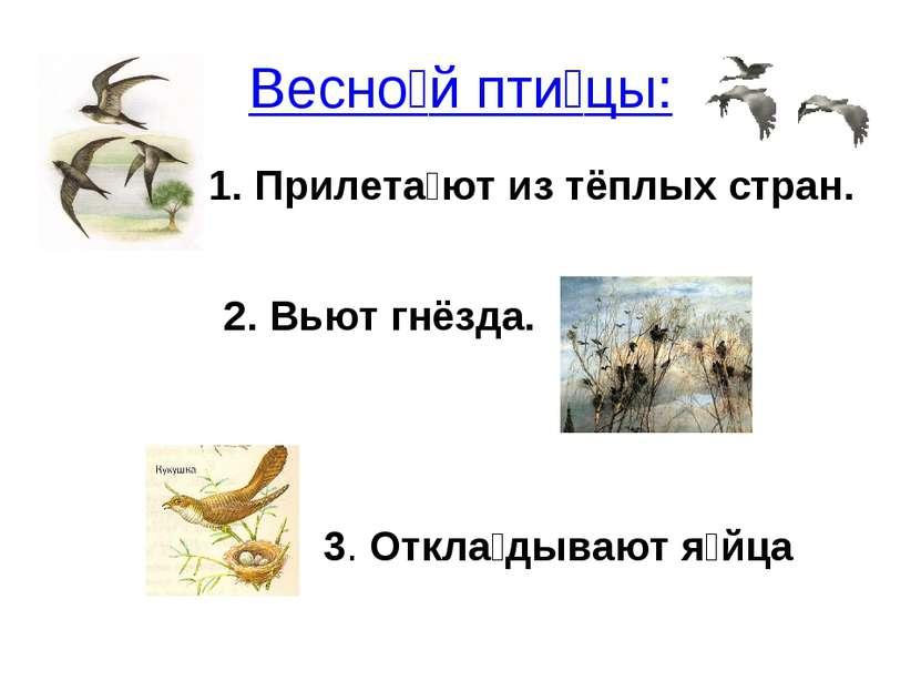 Весно й пти цы: Прилета ют из тёплых стран. 2. Вьют гнёзда. 3. Откла дывают я...