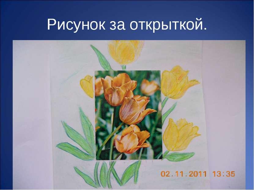 Рисунок за открыткой.