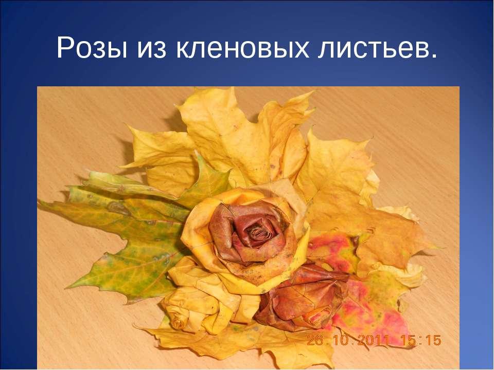 Розы из кленовых листьев.
