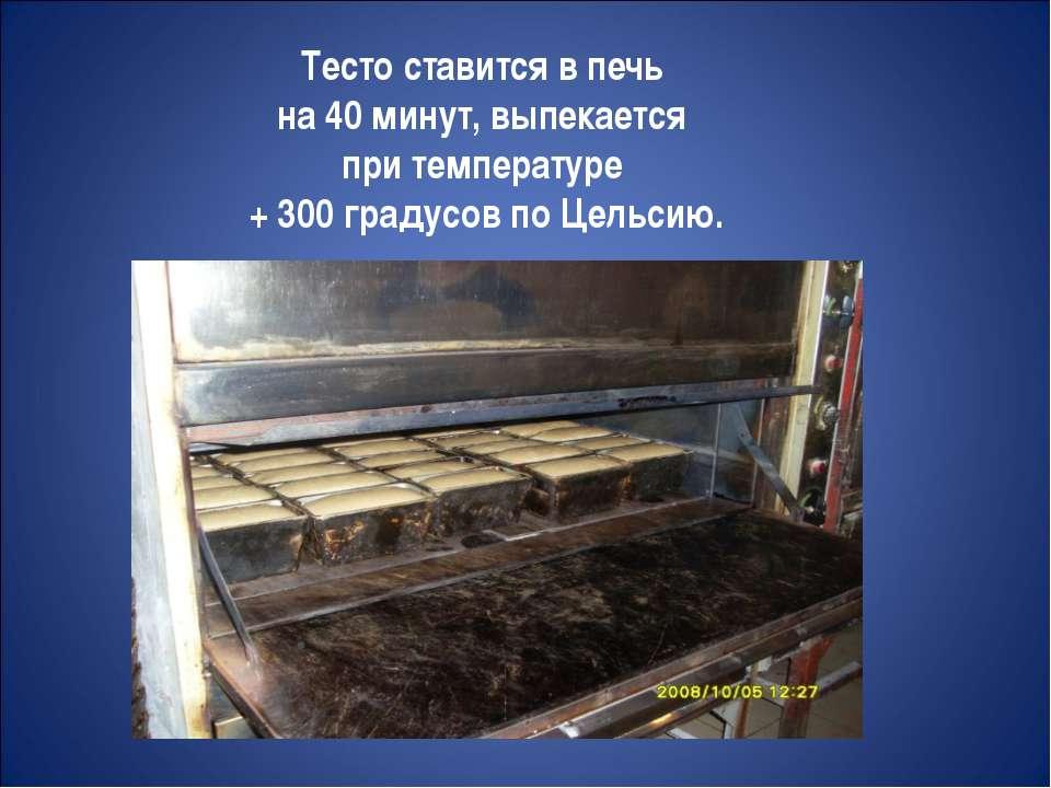 Тесто ставится в печь на 40 минут, выпекается при температуре + 300 градусов ...