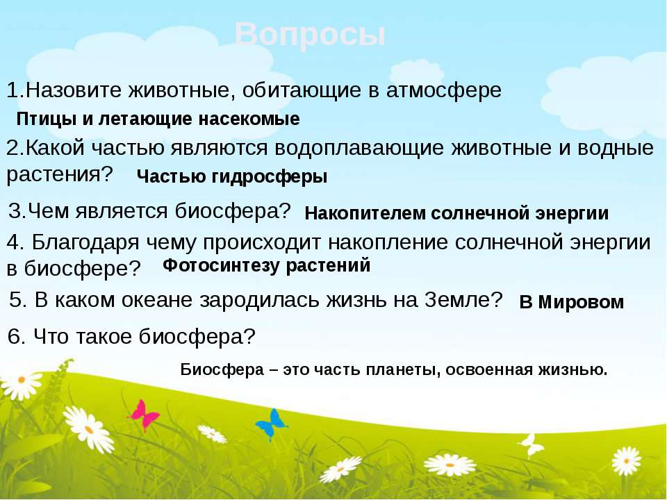 Вопросы 1.Назовите животные, обитающие в атмосфере Птицы и летающие насекомые...