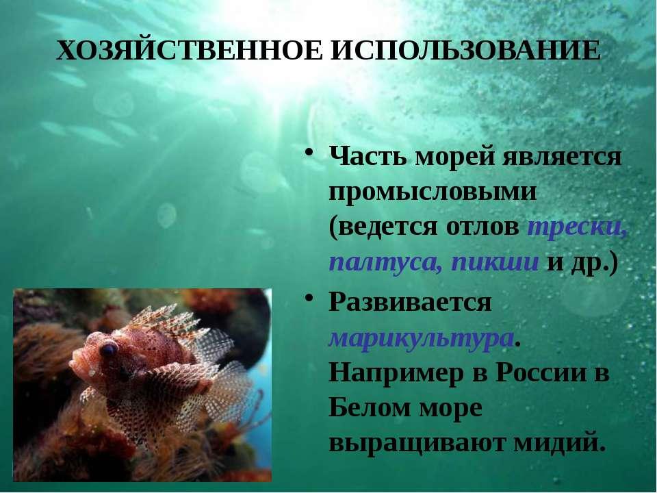 ХОЗЯЙСТВЕННОЕ ИСПОЛЬЗОВАНИЕ Часть морей является промысловыми (ведется отлов ...