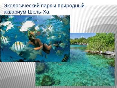 Экологический парк и природный аквариум Шель-Ха.