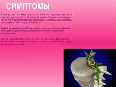 СИМПТОМЫ В зависимости от того, какая именно часть спинного мозга травмирован...