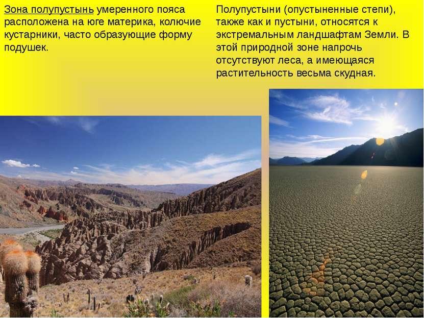 Зона полупустыньумеренного пояса расположена на юге материка, колючие кустар...