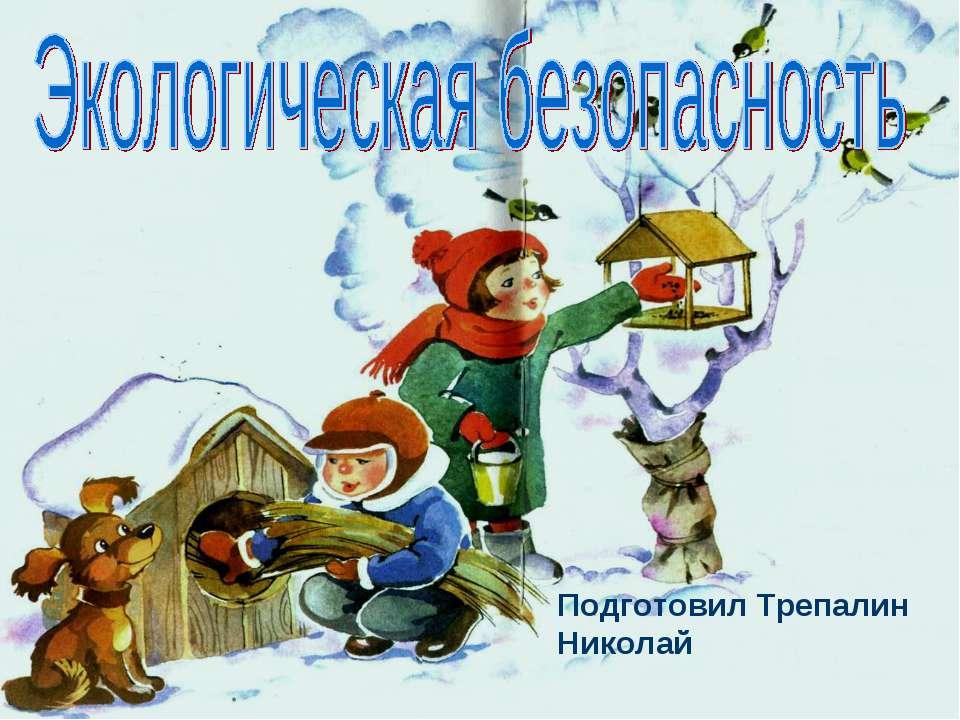 Подготовил Трепалин Николай