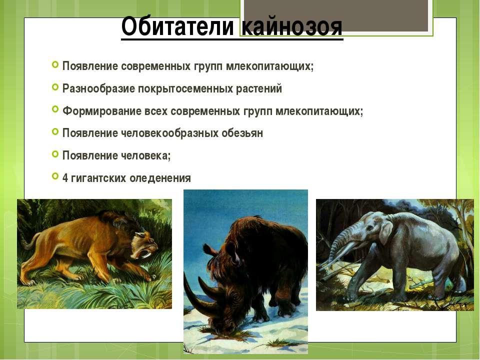 Обитатели кайнозоя Появление современных групп млекопитающих; Разнообразие по...