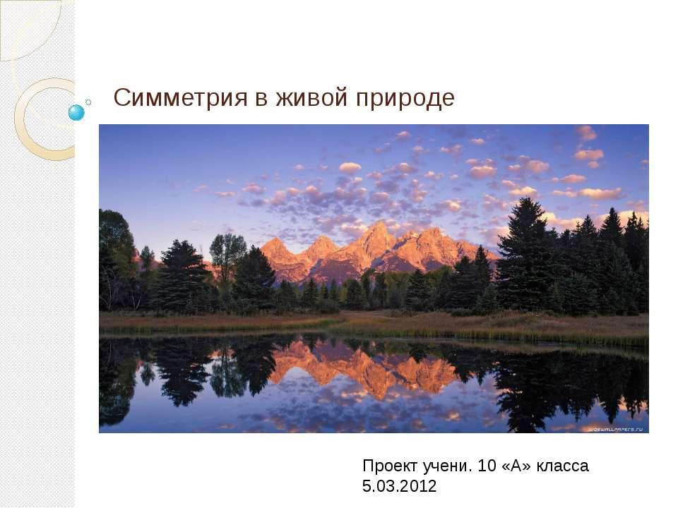 Симметрия в живой природе Проект учени. 10 «А» класса 5.03.2012