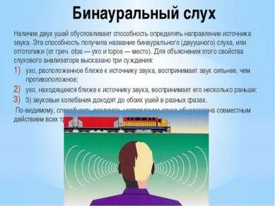Бинауральный слух Наличие двух ушей обусловливает способность определять напр...