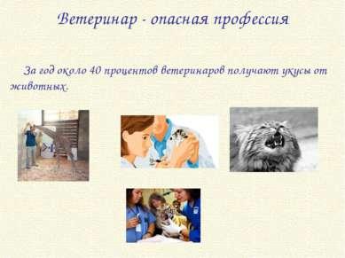 Ветеринар - опасная профессия За год около 40 процентов ветеринаров получают ...