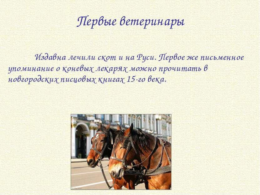 Издавна лечили скот и на Руси. Первое же письменное упоминание о коневых лека...