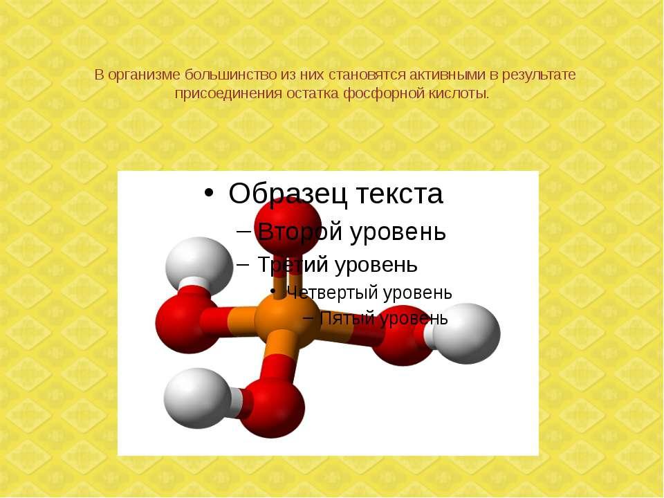 В организме большинство из них становятся активными в результате присоединени...