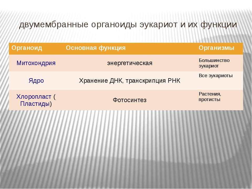 двумембранные органоиды эукариот и их функции Органоид Основная функция Орган...