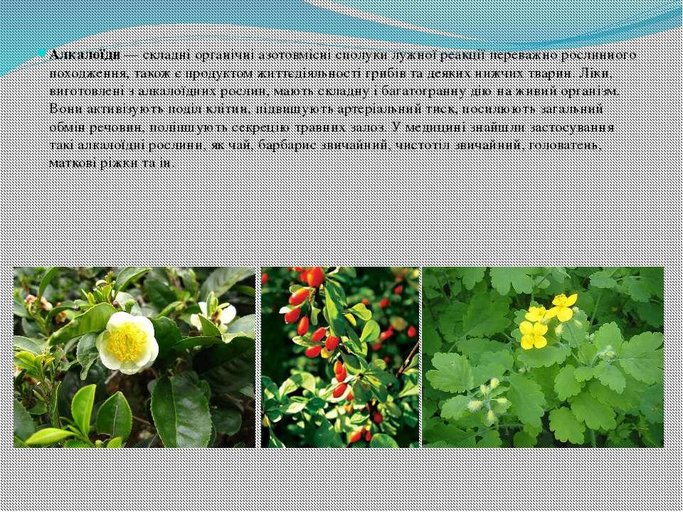 Алкалоїди— складні органічні азотовмісні сполуки лужної реакції переважно ро...