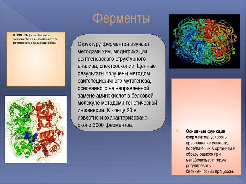 Реферат на тему ферменты витамины гормоны 4893
