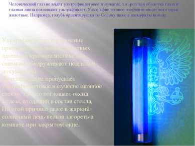 Человеческий глаз не видит ультрафиолетовое излучение, т.к. роговая оболочка ...