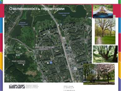 Озелененность территории В презентации используется шрифт Corbel Для заголовк...
