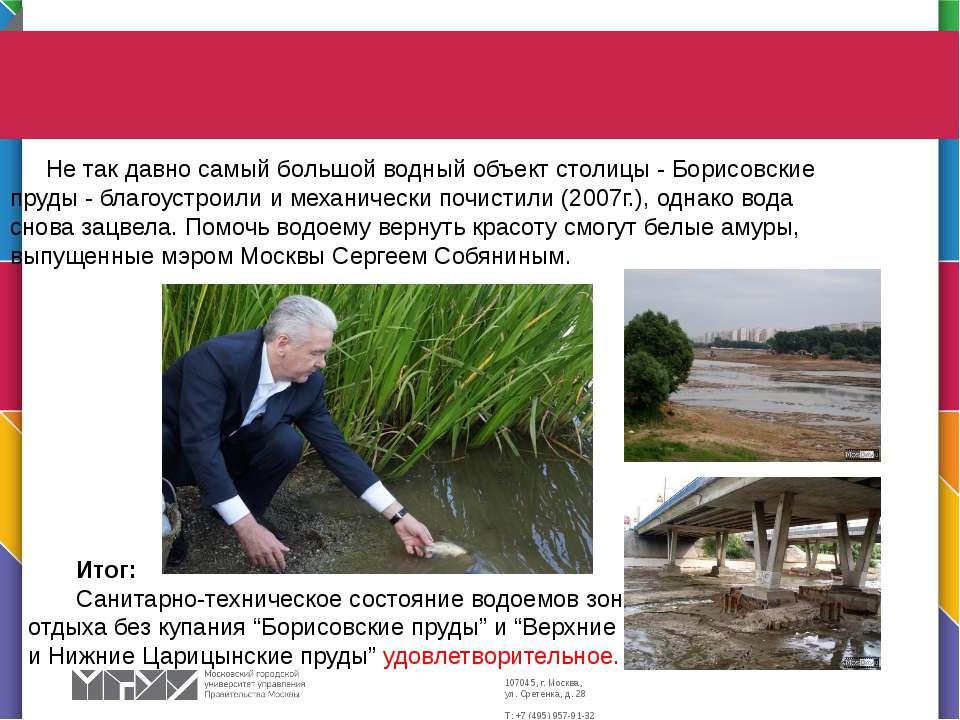 Не так давно самый большой водный объект столицы - Борисовские пруды - благоу...