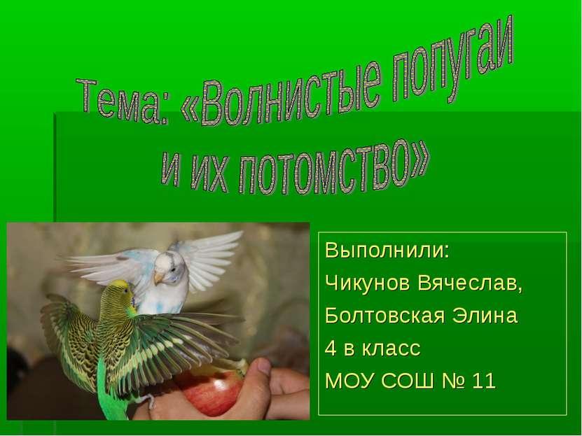 Выполнили: Чикунов Вячеслав, Болтовская Элина 4 в класс МОУ СОШ № 11