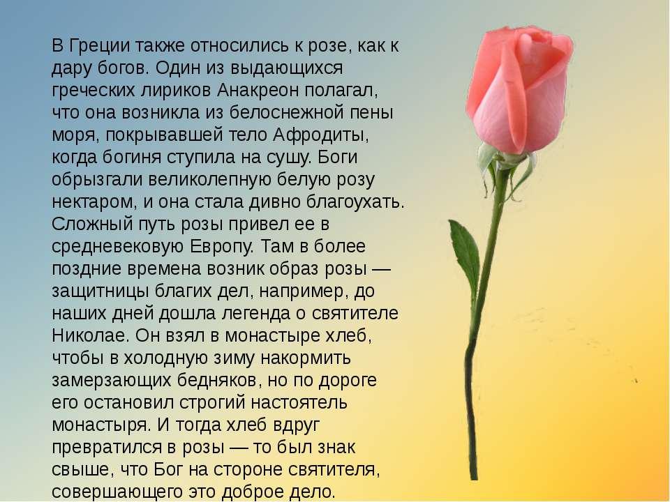 В Греции также относились к розе, как к дару богов. Один из выдающихся гречес...