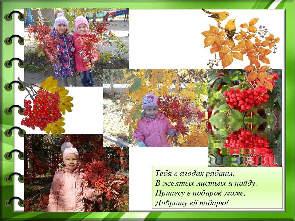 Тебя в ягодах рябины, В желтых листьях я найду. Принесу в подарок маме, Добро...
