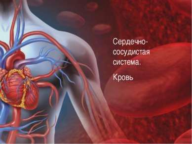 Сердечно- сосудистая система. Кровь