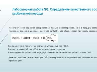Лабораторная работа №2. Определение качественного состава карбонатной породы