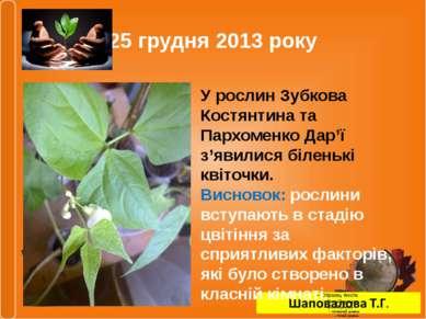 25 грудня 2013 року У рослин Зубкова Костянтина та Пархоменко Дар'ї з'явилися...