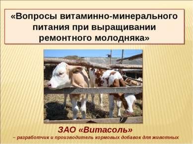 ЗАО «Витасоль» – разработчик и производитель кормовых добавок для животных «В...