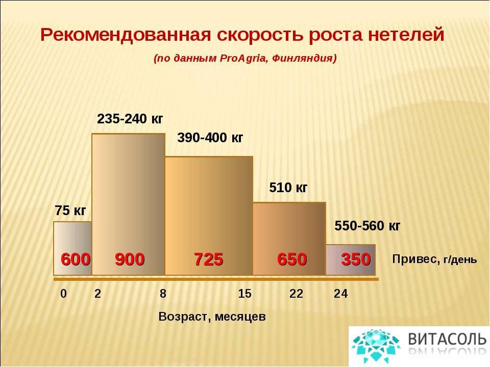 Рекомендованная скорость роста нетелей (по данным ProAgria, Финляндия) Привес...