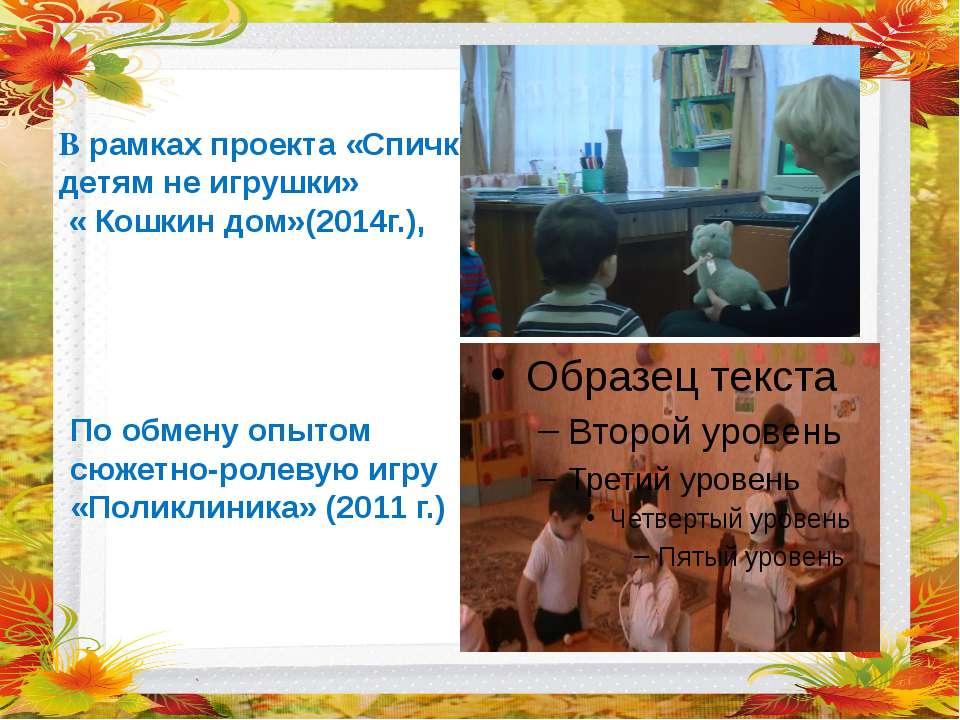 В рамках проекта «Спички детям не игрушки» « Кошкин дом»(2014г.), По обмену о...