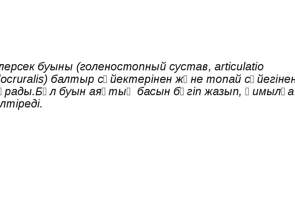 Тілерсек буыны (голеностопный сустав, articulatio talocruralis) балтыр сүйект...