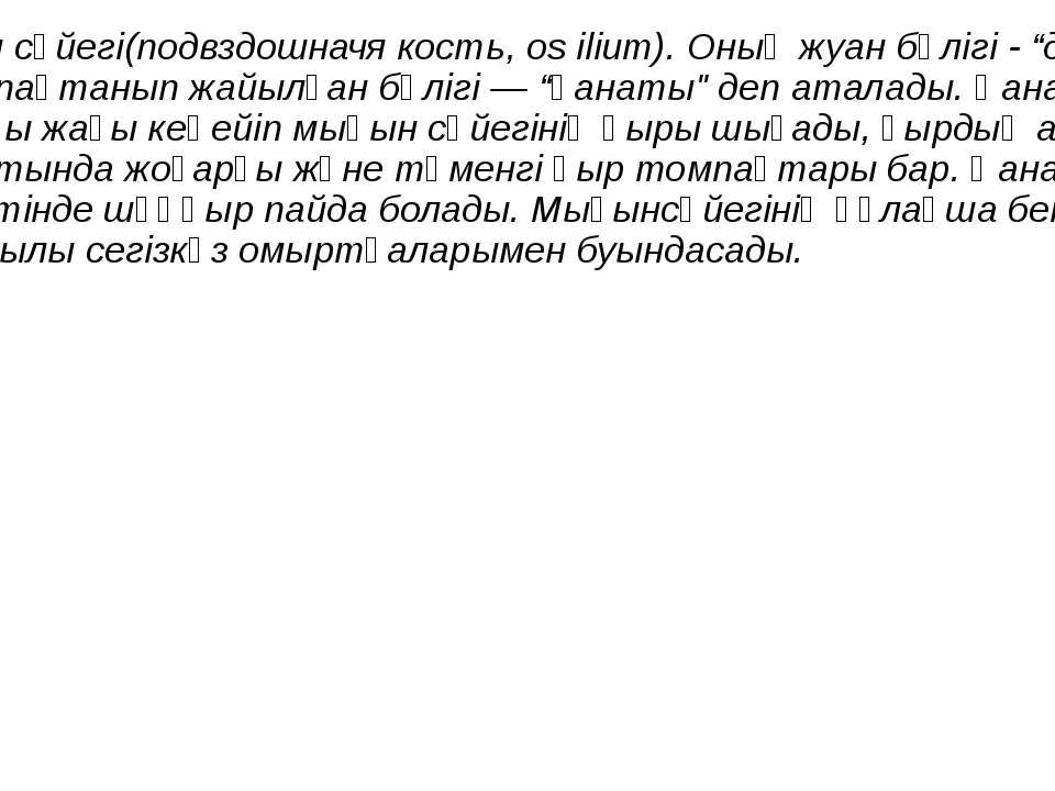 """Мықын сүйегі(подвздошначя кость, os ilium). Оның жуан бөлігі - """"денесі"""", ал ж..."""