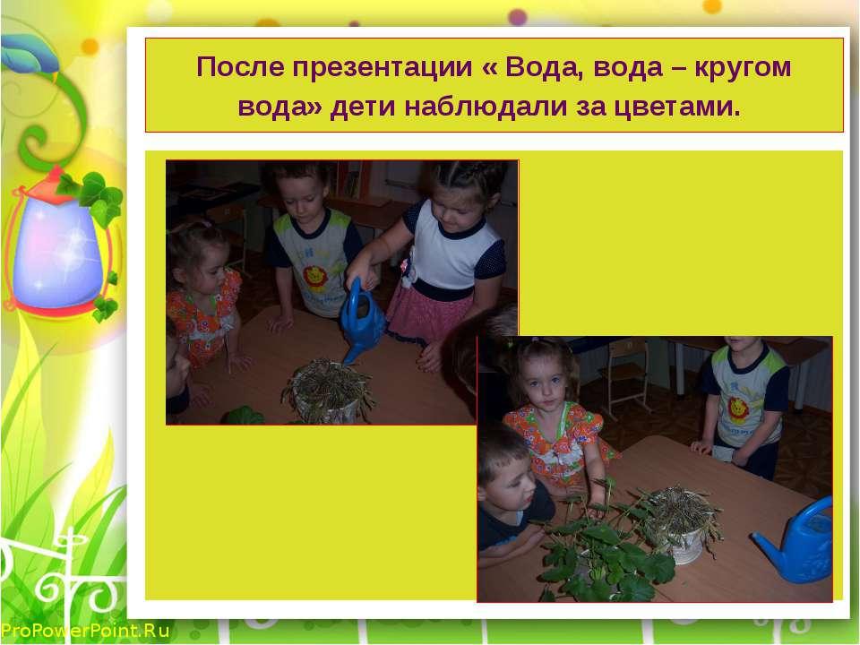 После презентации « Вода, вода – кругом вода» дети наблюдали за цветами. ProP...