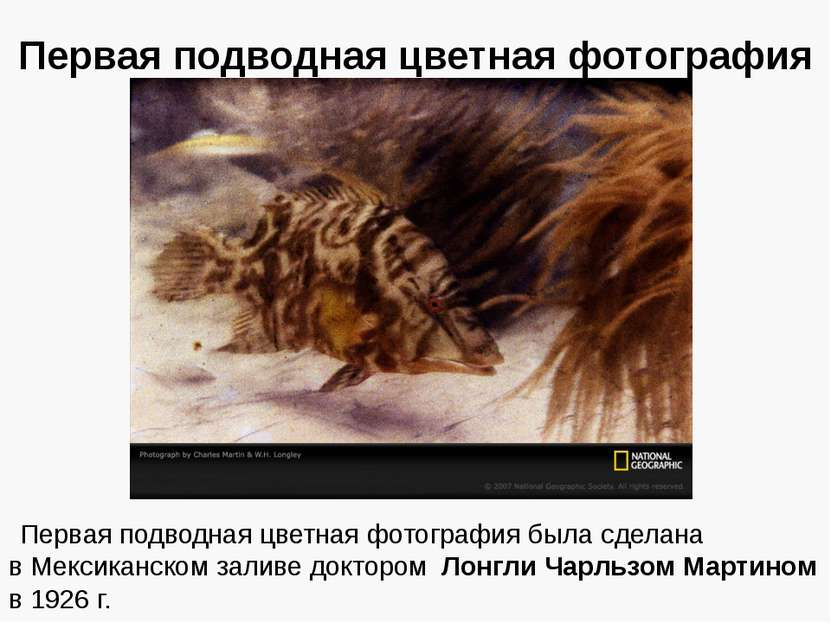 Первая подводная цветная фотография Первая подводная цветная фотография была ...
