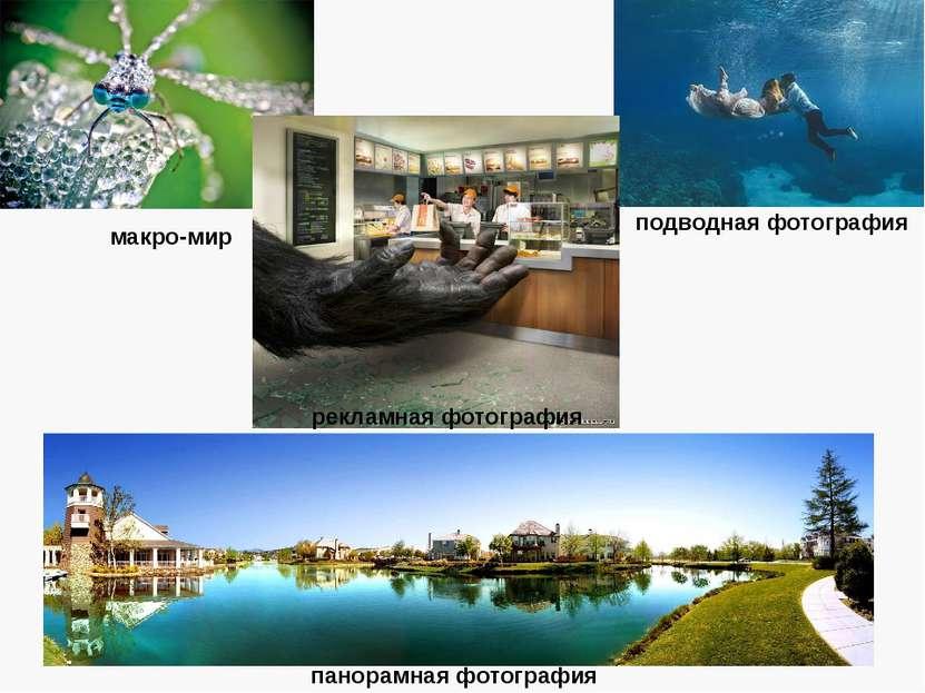 макро-мир панорамная фотография подводная фотография рекламная фотография