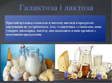 Простий вуглевод галактоза в чистому вигляді в продуктах харчування не зустрі...