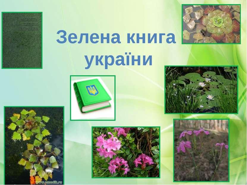 Зелена книга україни