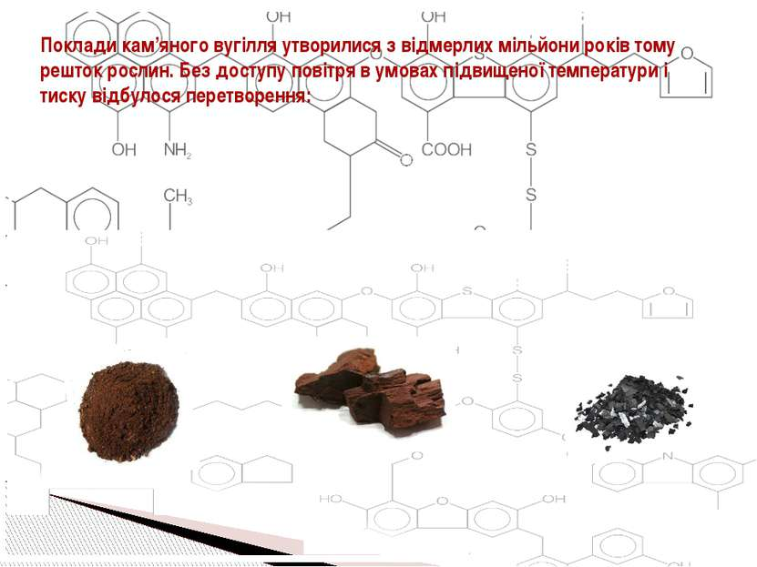 Поклади кам'яного вугілля утворилися з відмерлих мільйони років тому решток р...