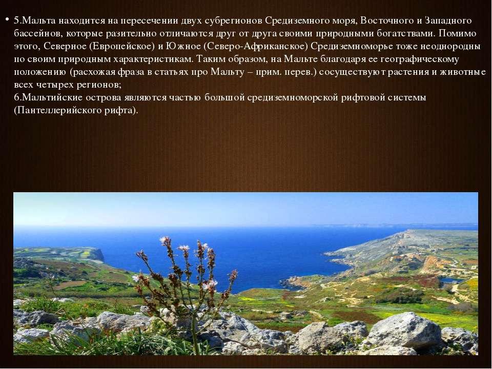5.Мальта находится на пересечении двух субрегионов Средиземного моря, Восточн...