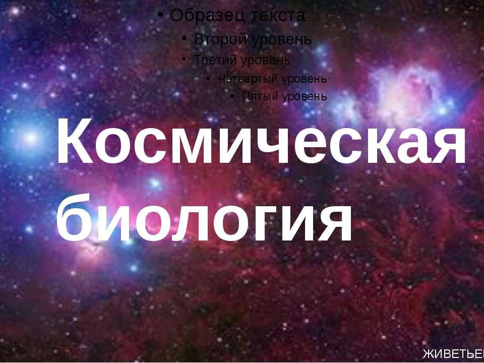 Космическая биология ЖИВЕТЬЕВА АНГЕЛИНА