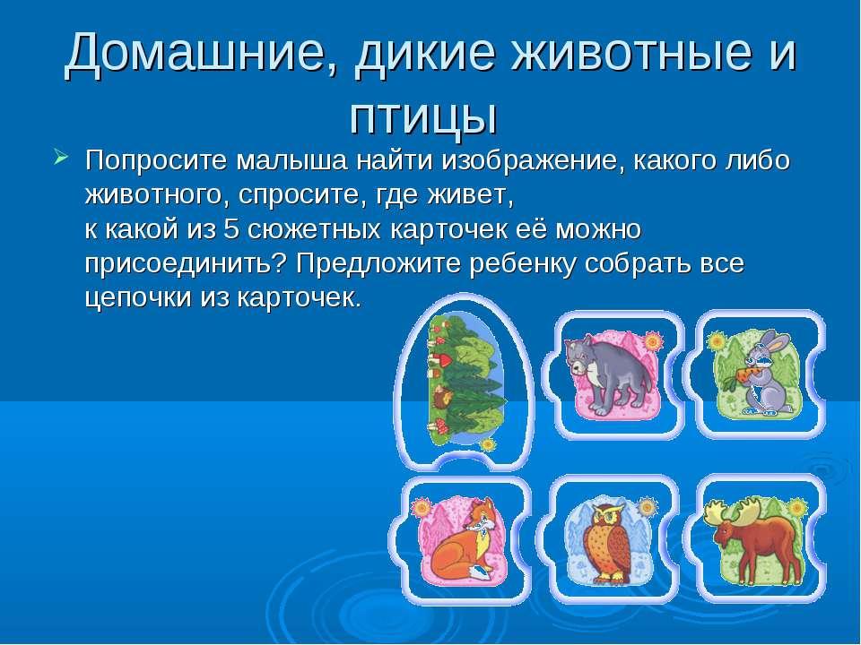 Домашние, дикие животные и птицы Попросите малыша найти изображение, какого л...