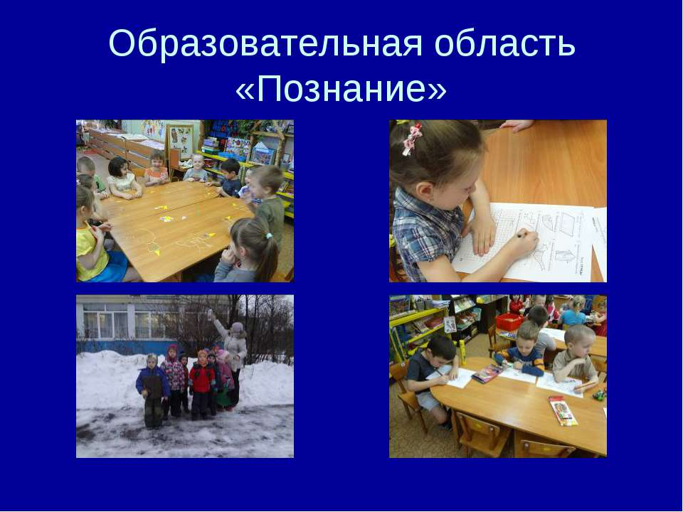 Образовательная область «Познание»