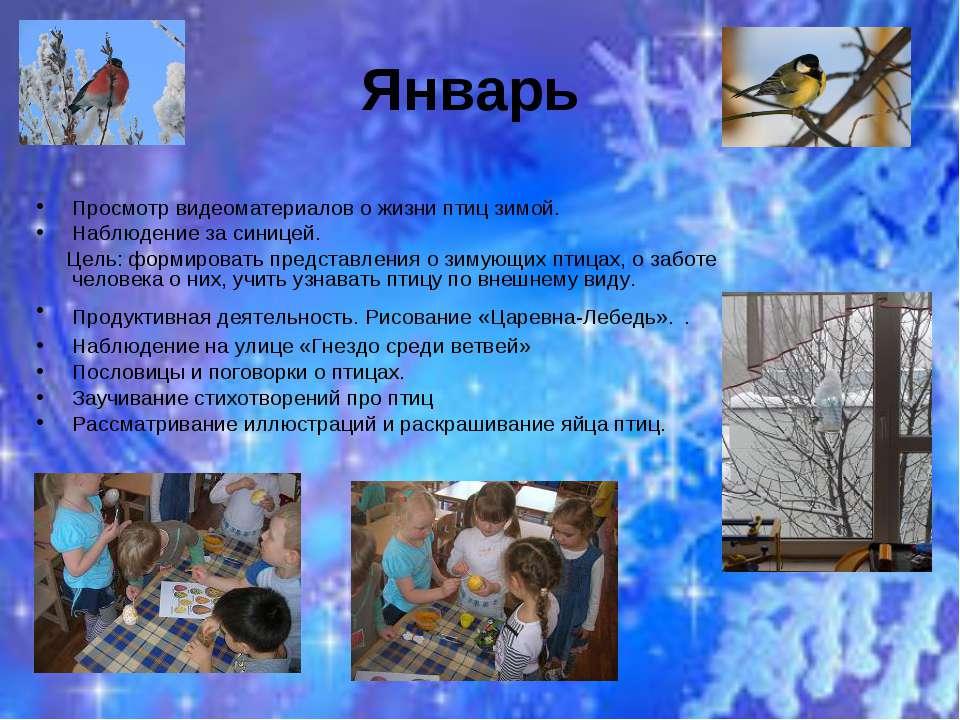 Январь Просмотр видеоматериалов о жизни птиц зимой. Наблюдение за синицей. Це...